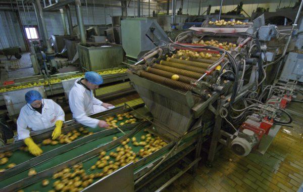 Apullma-Kartoffelwaschanlage